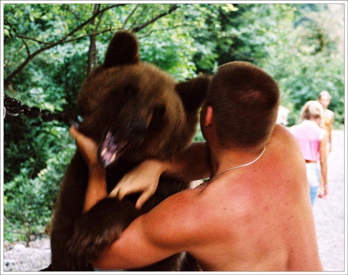 ...медвежонок, а целый медведь.  Стоит шатёр, посреди которого огромный.