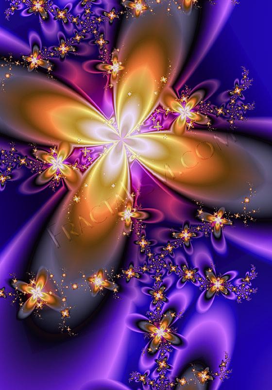 http://www.ljplus.ru/img/b/e/best_julia/Jay_Jacobson_fractal_flower_power.jpg