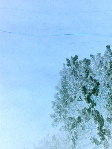 dimaidr. инвертированная елка в собственном соку
