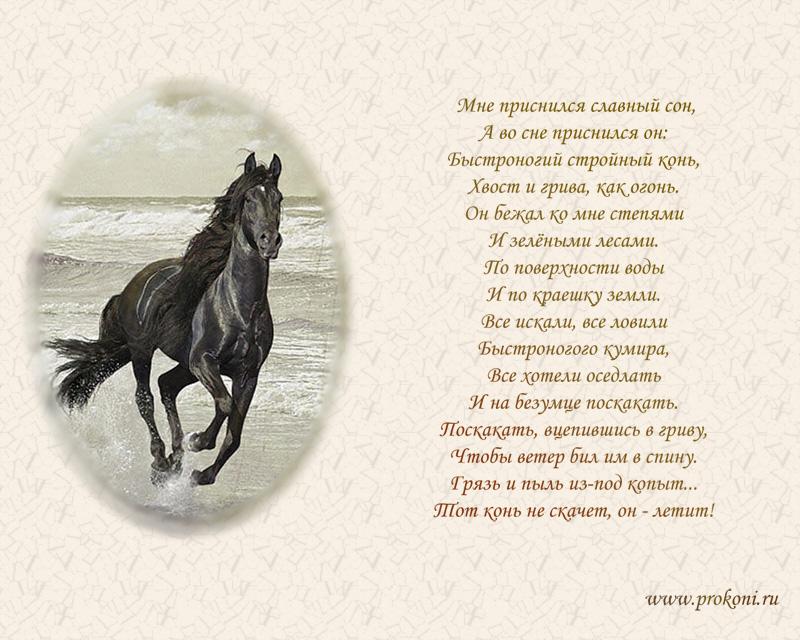 Стихи про вороного коня