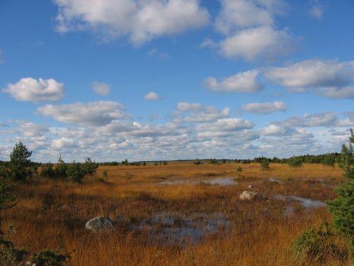 Estonia, Vilsandi, oktober-2004. (c)legnangel