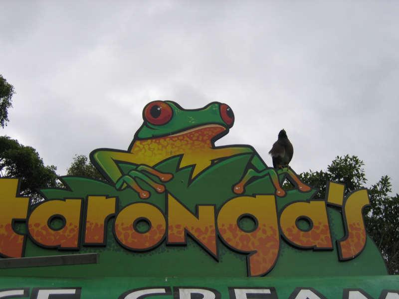 taronga zoo s marketing mix