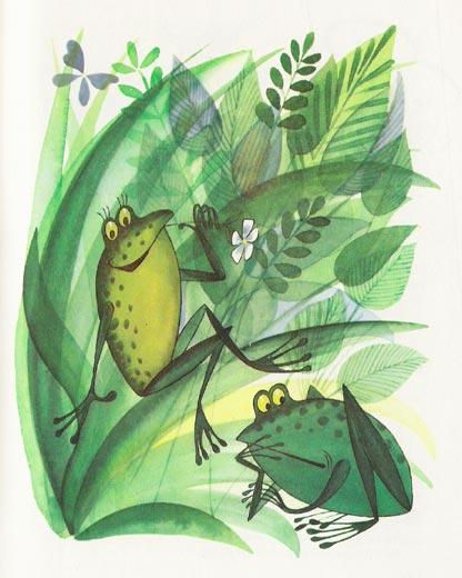 Лягушка рисунок