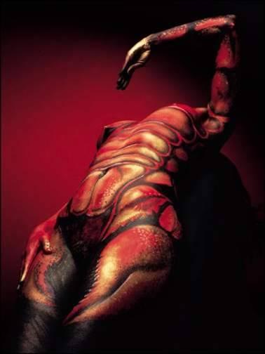 seksualnie-znaki-tela