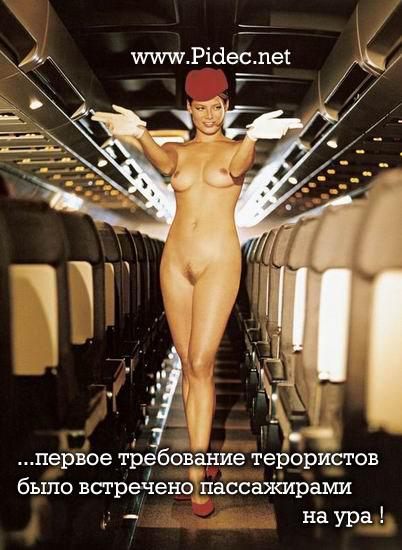 Фото эро стюардессы