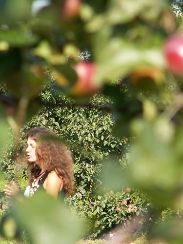 девочка в яблоках