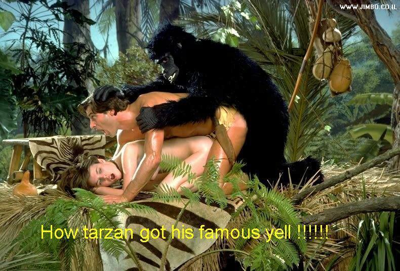 Секс с гориллой фото фото 10-90