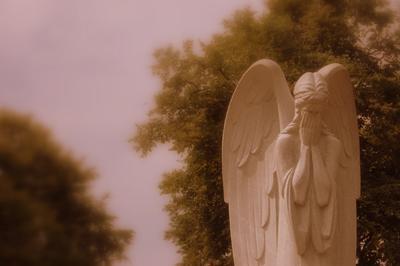 Житомир. Ангел, который грустит...