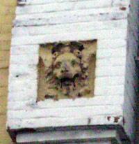 Житомирский зверь