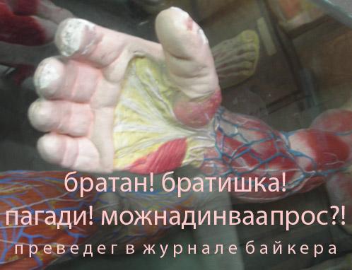 http://www.ljplus.ru/img3/g/r/greator/bratan.jpg
