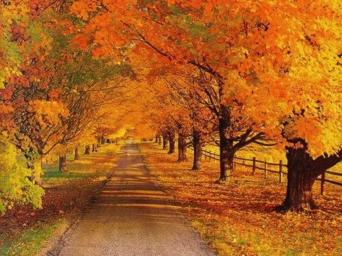 ура осень картинки