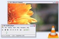 VideoLan Player 0.9