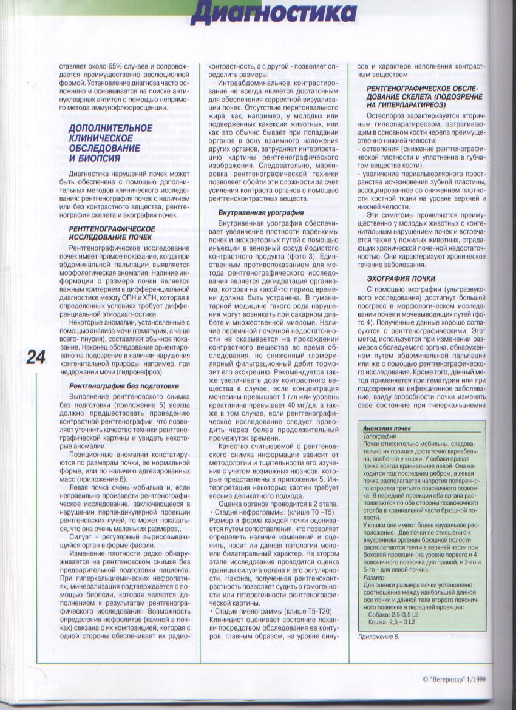 http://www.ljplus.ru/img3/u/p/upiter777/Izobrazhenie-051.jpg