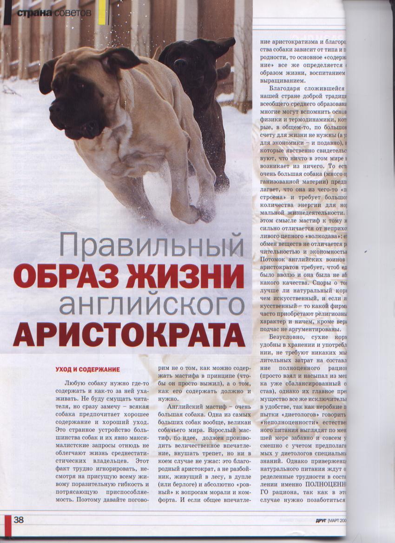 http://www.ljplus.ru/img3/u/p/upiter777/Izobrazhenie-055.jpg