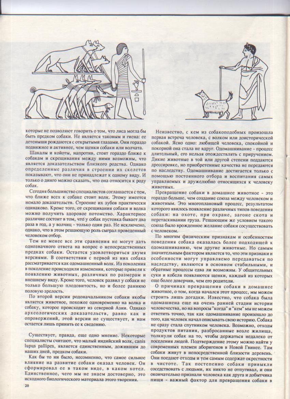 http://www.ljplus.ru/img3/u/p/upiter777/_Izobrazhenie-009.jpg