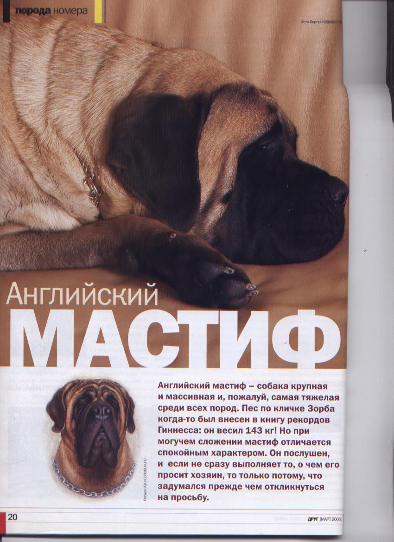http://www.ljplus.ru/img3/u/p/upiter777/__Izobrazhenie-042.jpg