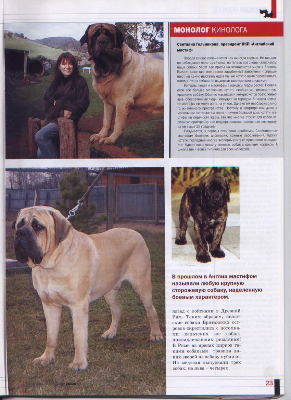 http://www.ljplus.ru/img3/u/p/upiter777/__Izobrazhenie-045.jpg