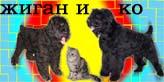 http://www.ljplus.ru/img3/u/p/upiter7777/765en54k.jpg