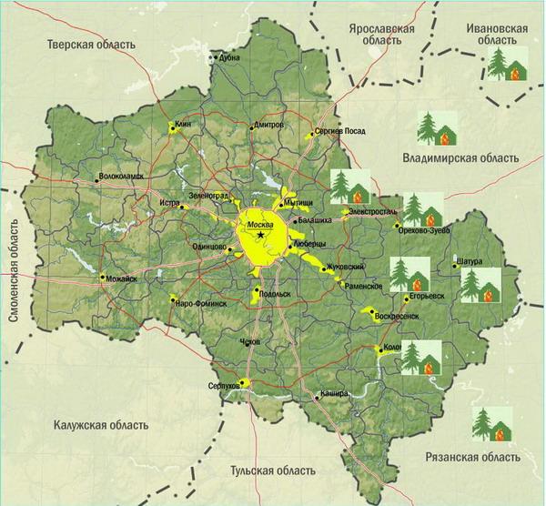Московской области нужно активней готовиться к лесным пожарам.