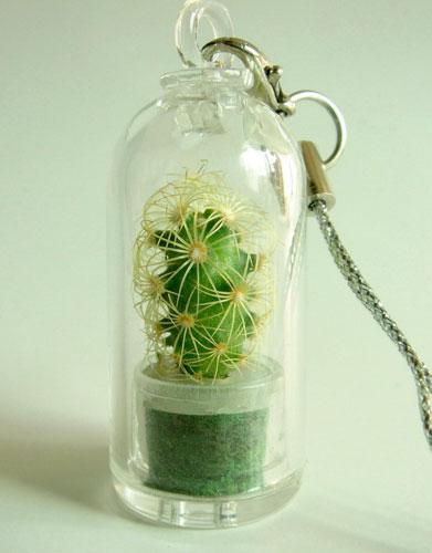 брелок с живым кактусом