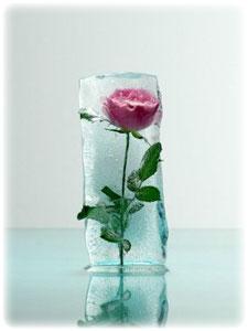 Волшебная ледяная роза