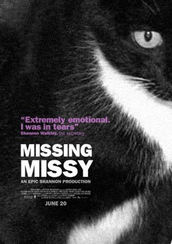 Потерялась кошка (Дизайнер Кошка Мисси)