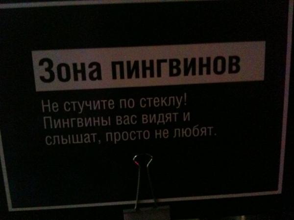 20.32 КБ