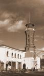 Житомир. Пожарная Башня 1895