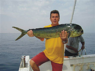 каждый день чем питается рыба дорадо поддержите проект
