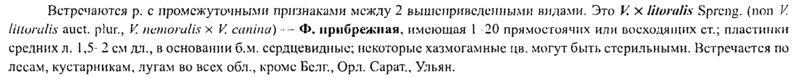 http://www.ljplus.ru/img4/b/a/baguk/p0370.jpg
