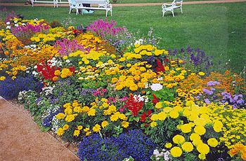 К цветникам ландшафтной композиции