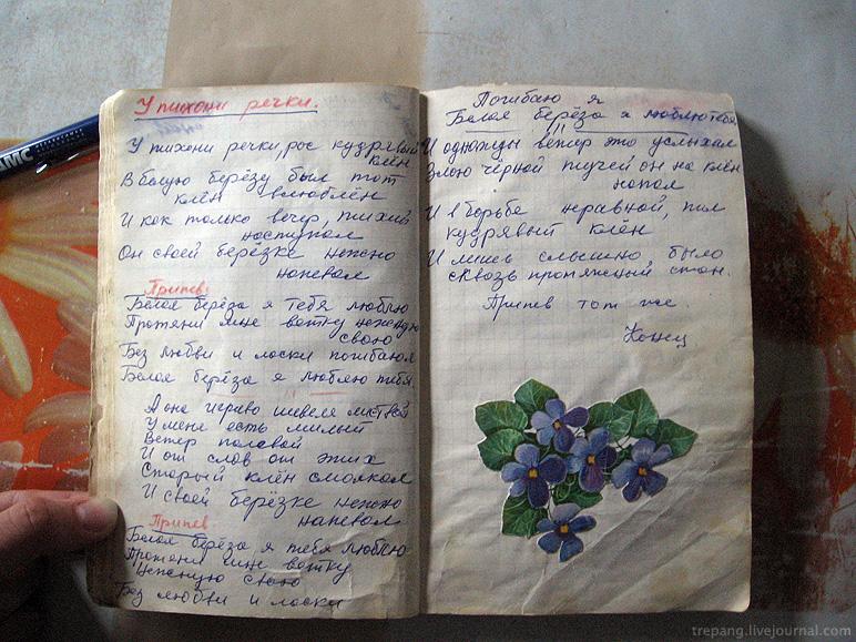 Дневник своими руками простой 169