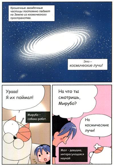 95.56 КБ