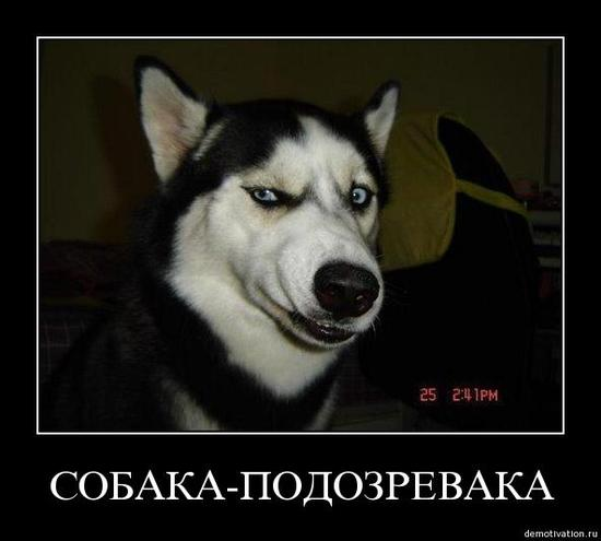http://www.ljplus.ru/img4/d/a/dare_speranza/9_149.jpg