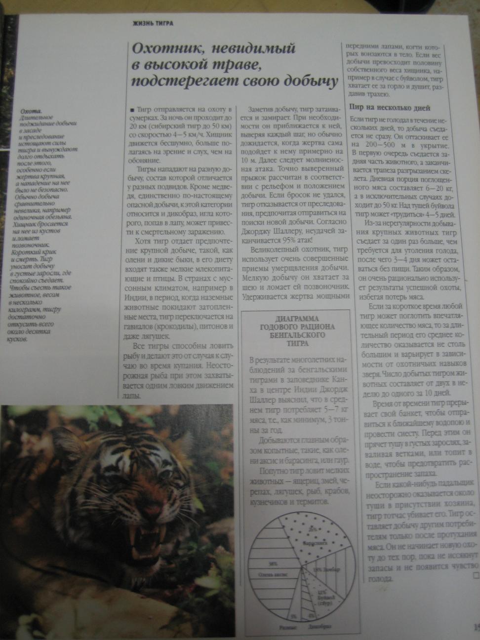 http://www.ljplus.ru/img4/d/o/doctor_insulin/IMG_7943.jpg