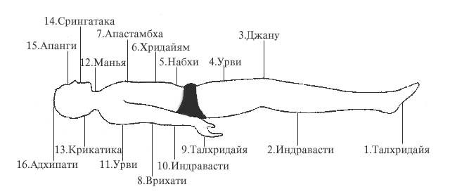 23.13 КБ