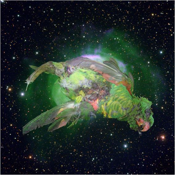 http://www.ljplus.ru/img4/e/c/ecologys/Kazakov_tainted_space_8.jpg