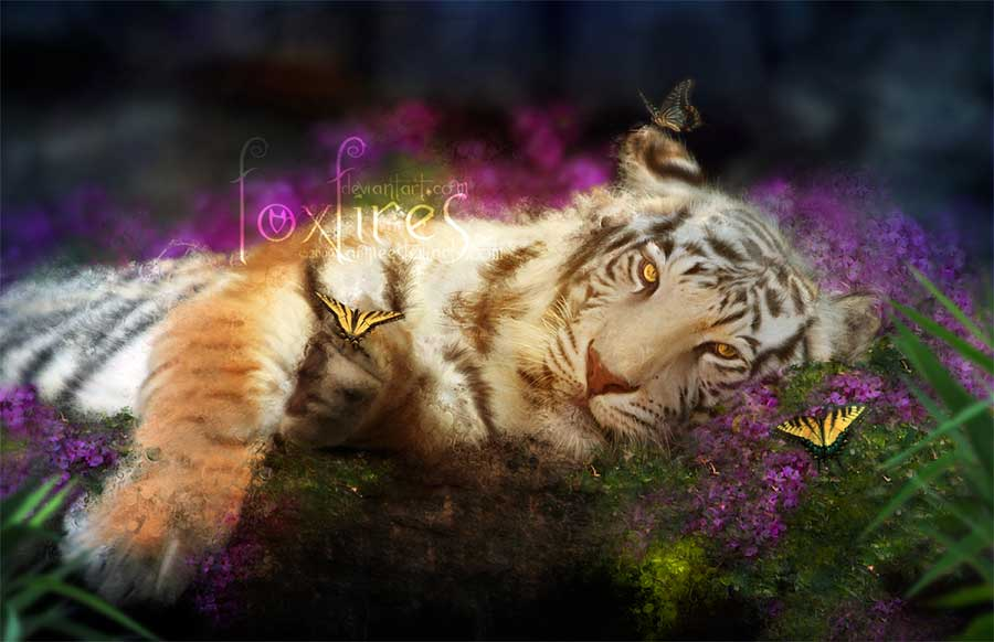 http://www.ljplus.ru/img4/e/h/eho5/AimeeStewart_18.jpg