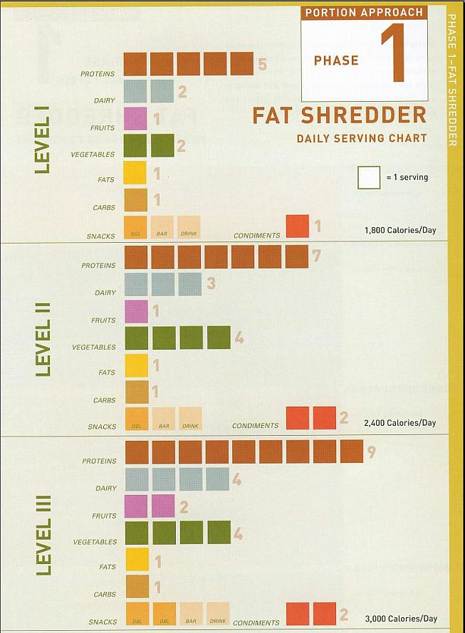 Fat shredder diet pdf brief