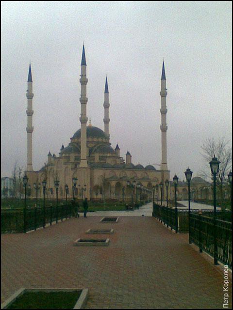 http://www.ljplus.ru/img4/e/r/ervix/Image-03-web.jpg