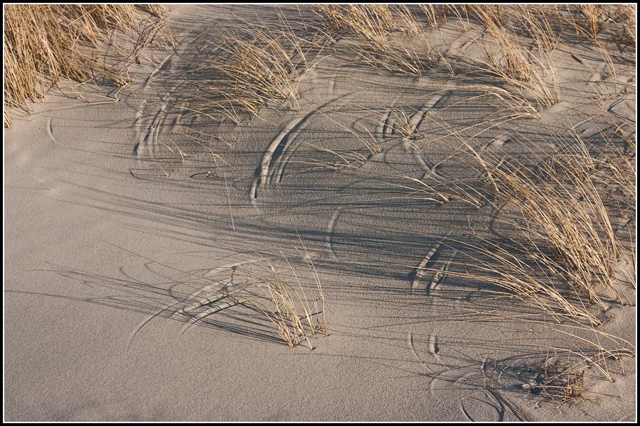 Рисунки травы на песке