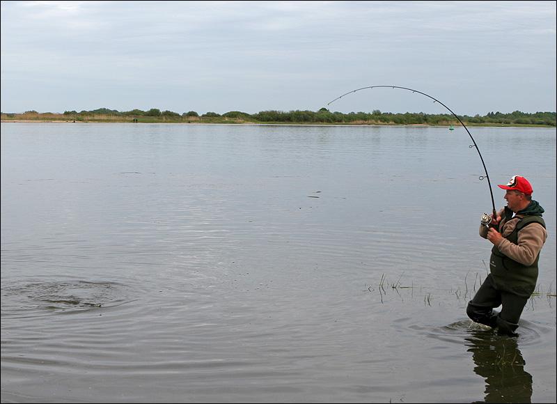 прогноз клева в гродно стоит ли ехать на рыбалку