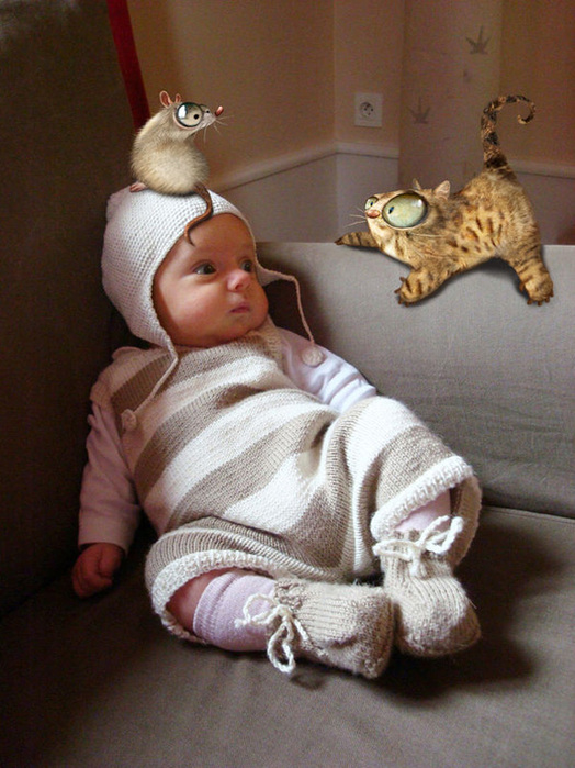 http://www.ljplus.ru/img4/g/l/glamshine_1/47327791_7dnei_cat_adventure_07.jpg