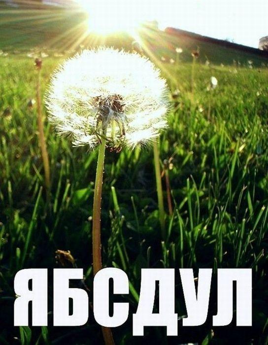 73.32 КБ