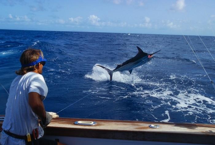 про рыбалку в океане