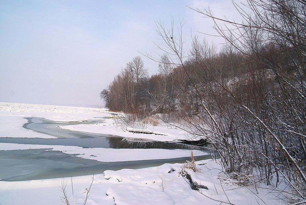 Среди снега пробиваются полыньи