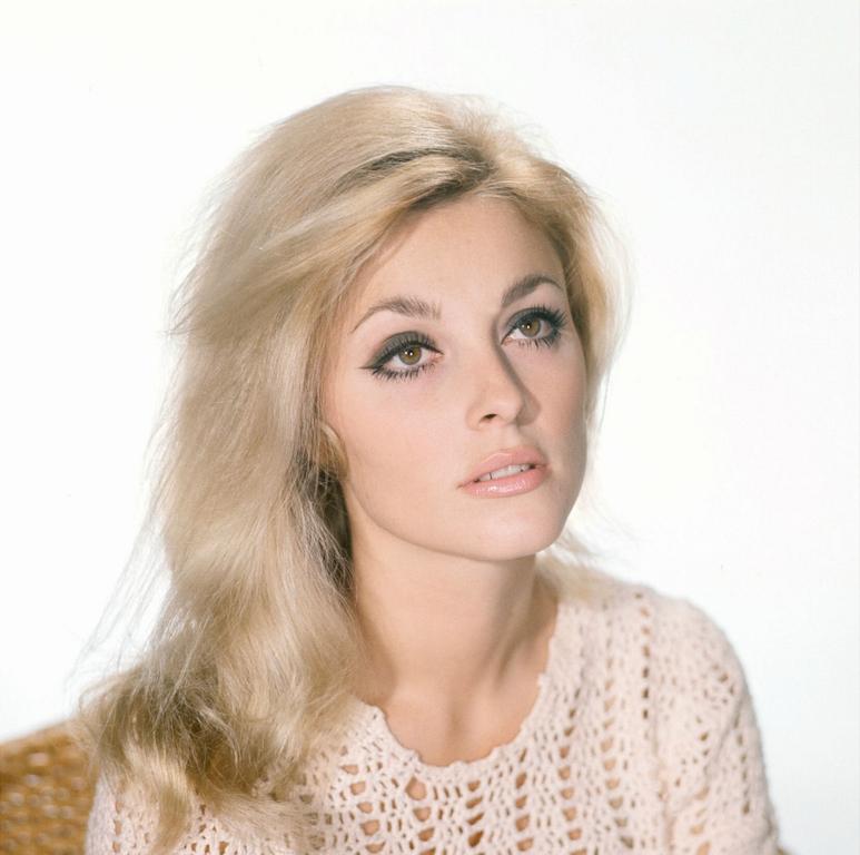Sharon abercia
