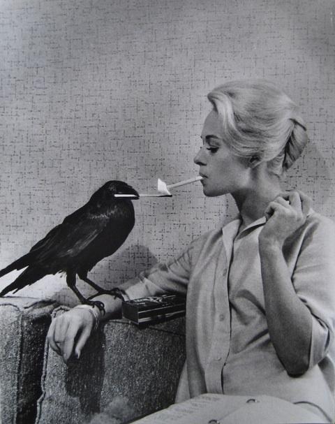Imagenes cinéfilas - Página 3 Philippe-Halsman---Tippi-Hedren_-Hollywood_-1962