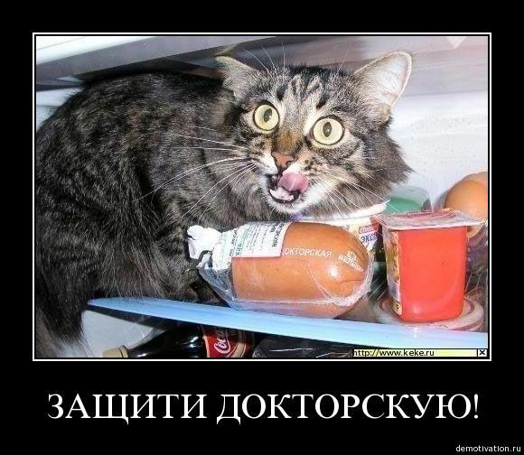 http://www.ljplus.ru/img4/k/a/kassian/gr1vpece9irn.jpg