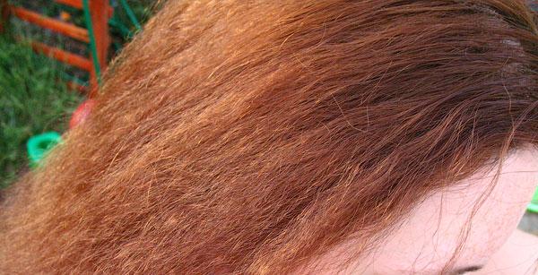 Сушит ли хна волосы